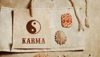 Le Karma Yoga ou la philosophie de l'action désintéressée